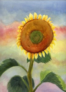 sunflowerB