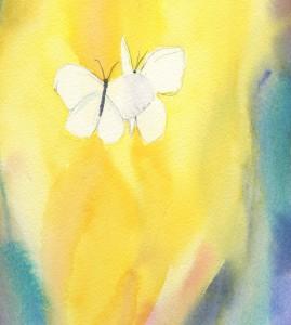butterflyglowdance