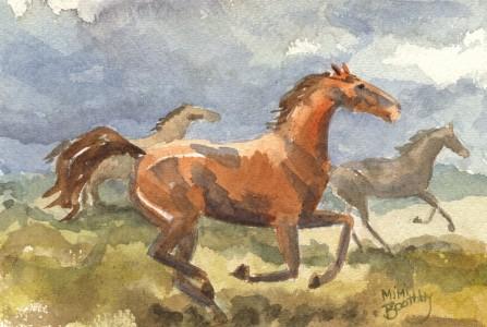 gallopingherd