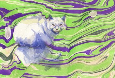 greenmarbledcat
