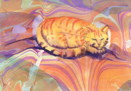 orangemarblecat