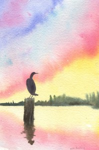 cormorantsunset