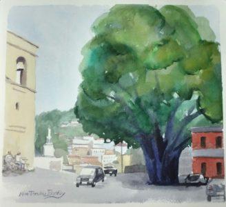 sersaletree