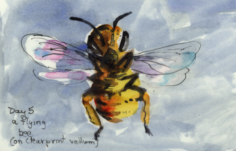 day5bee